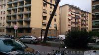 Firenze-10-2014_8