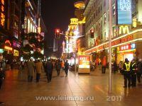 shanghai_55_2011