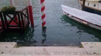 Venezia-10-2014_2