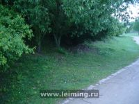 drupa_2012_36