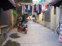 shanghai_22_2011