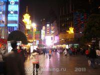 shanghai_46_2011