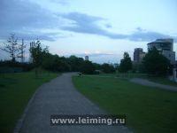 drupa_2012_31